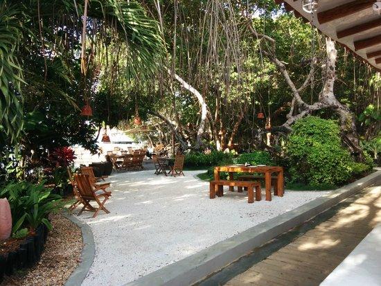 La Ardilena: Area comun