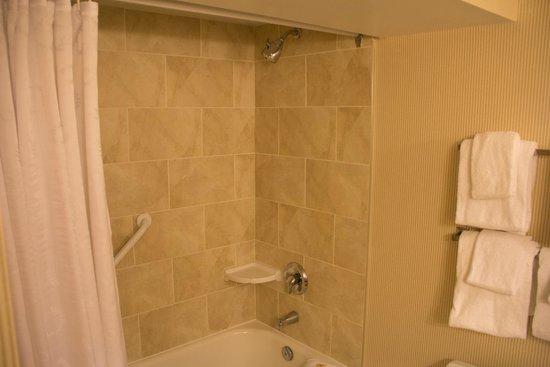 فندق شيراتون أون ذا فولز: Salle de bain