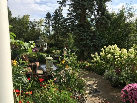 A G Thomson House Bed and Breakfast: You could spend all day in the garden areas