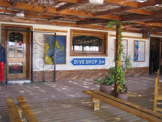 Colona Divers : Inside - Sisällä toimistolla