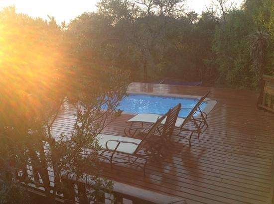 Kariega Game Reserve - All Lodges: swimming pool