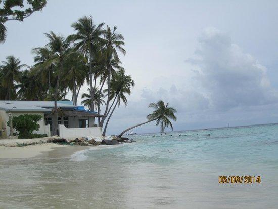 Kaani Village & Spa: Beach area