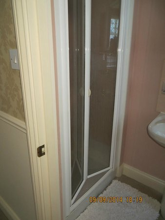 La Bonne Vie Guest House : shower door. This would have broken if we had tried to close it completely