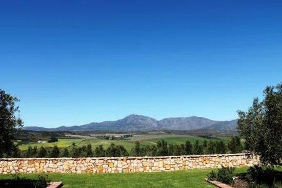 Gabrielskloof: The view...