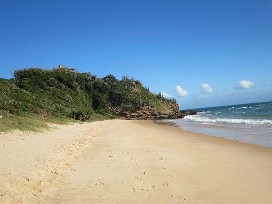 Pousada Caminho da Praia: Praia da Tartaruga