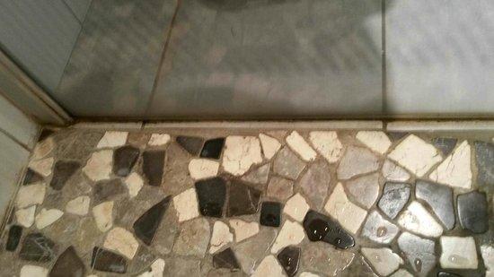 Hôtel-Restaurant Le Régal : Moisissures dans la douche