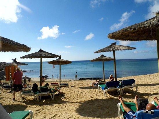 SBH Costa Calma Beach Resort: sea view