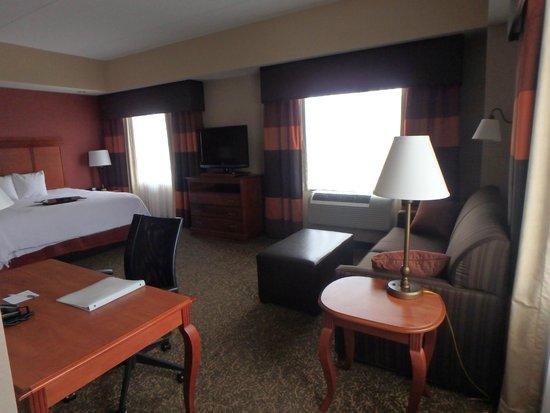 Hampton Inn & Suites Pittsburgh - Downtown: Living room/bedroom