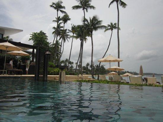 Dorado Beach, a Ritz-Carlton Reserve : Infinity pool - next to the beach