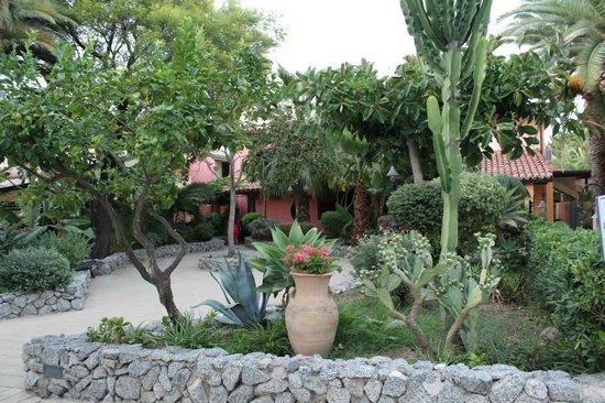 Hotel Villaggio Club Costa degli Dei: Giardino