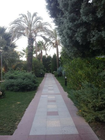 Belek Beach Resort Hotel: Chemin