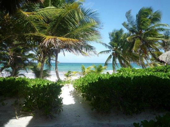 Hotel Cabanas Tulum : vue  de la chambre