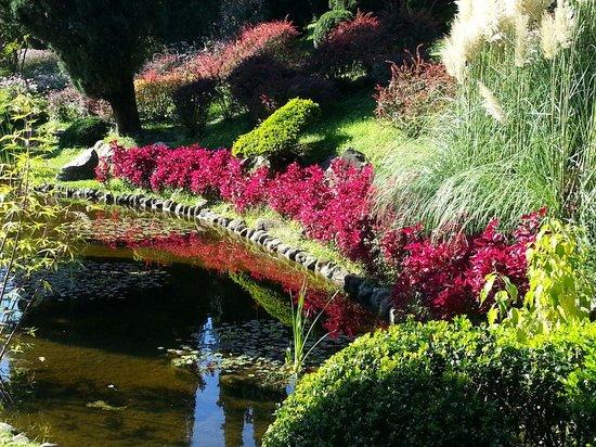 Parco Giardino Sigurta : I colori del parco...