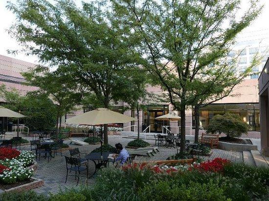 Hyatt Regency Dulles: エントランス右の庭