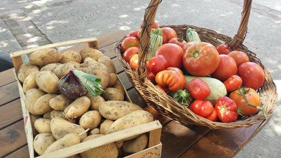 Agriturismo Aglioni: Erntefrisch aus eigenem Anbau