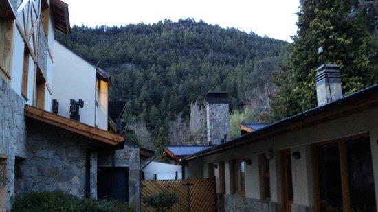 Monte Verde: Vista