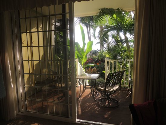 Pineapple Inn: Our luscious view of the lanai and garden