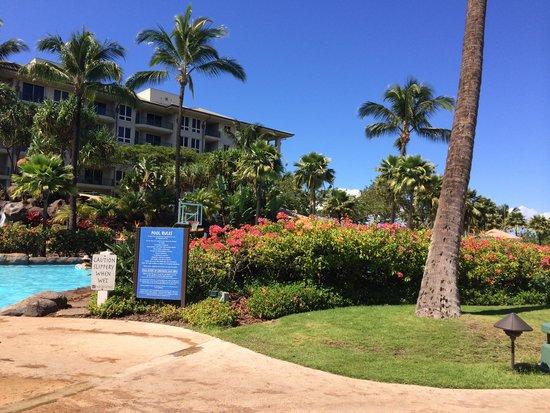 The Westin Kaanapali Ocean Resort Villas : Resort pool
