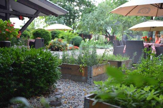 Zagroda Bamberska Hotel: Garden