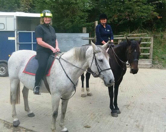Springhill Farm Riding Stables: Luna and George, 2 of the gorgeous horses
