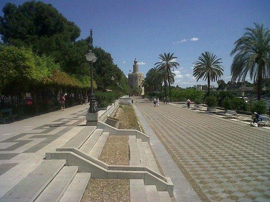 Paseo de Las Delicias