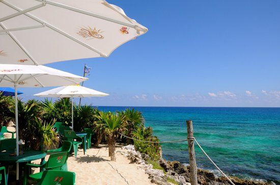 Coconuts Bar and Grill : Vista do restaurante.