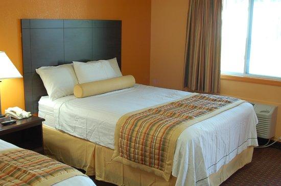 Budgetel Inn South Glens Falls : Room Photo