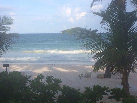 The Beach Tulum : Vista desde mi habitación