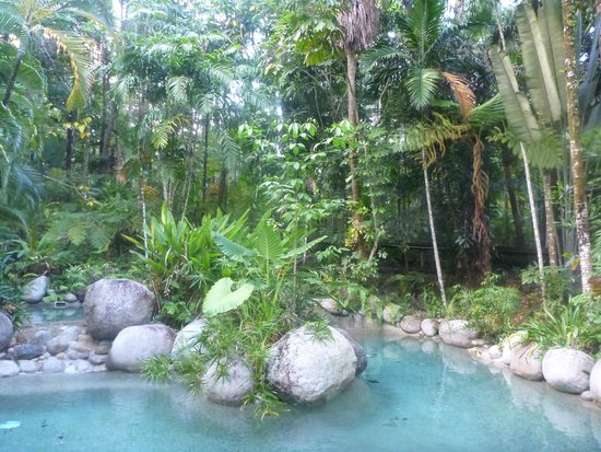 Silky Oaks Lodge: The pool