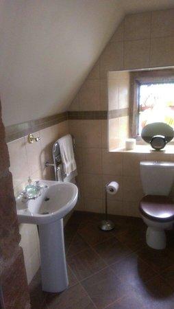 Carrick Lodge Guest House : Single room en suite very nice