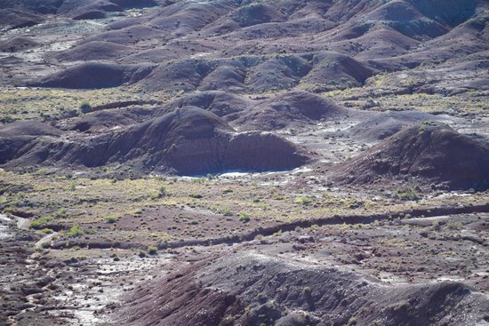 Painted Desert : Pretty View