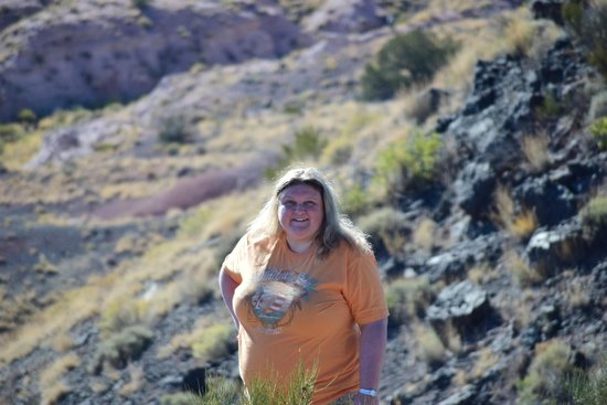 Painted Desert : That's me!
