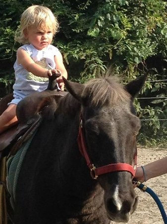 Pony Ride Picture Of Old Mcfaye S Farm Castle Hayne Tripadvisor