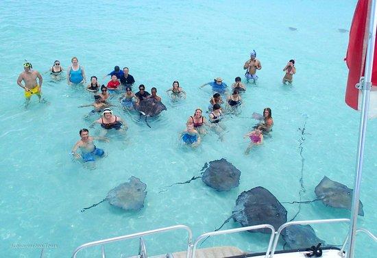 Acquarius Sea Tours: group pic
