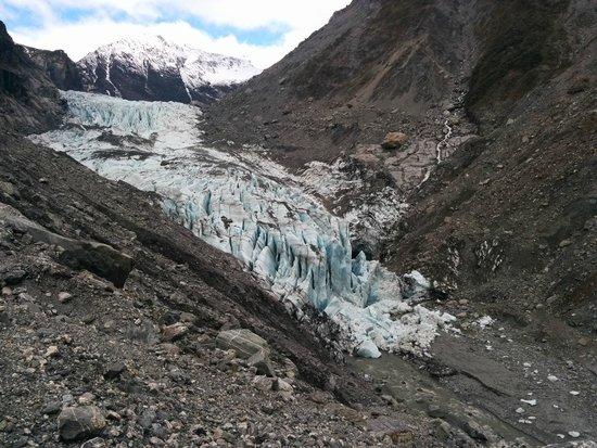 Fox Glacier Hiking Trails : Fox Glacier