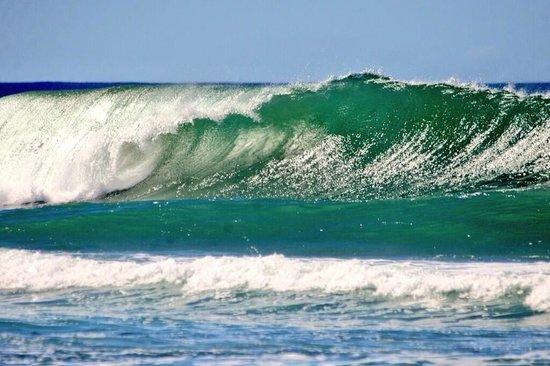 Casa Verde Hotel: Sandy Beach!