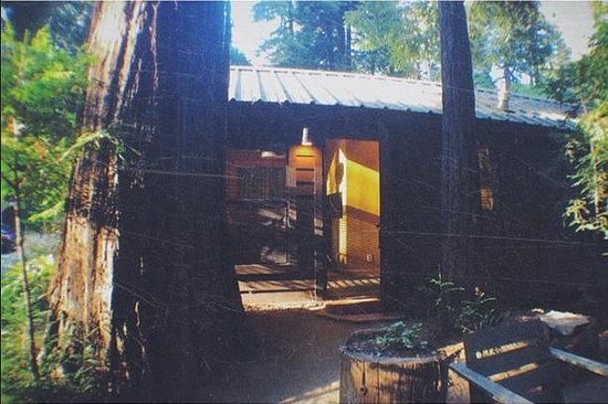 Glen Oaks Big Sur: Sycamore Cabin