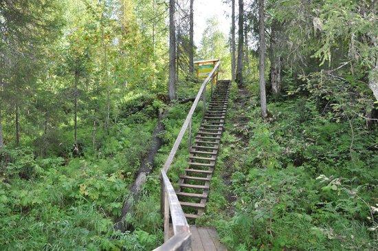 Pinega, Rusko: в начале пути