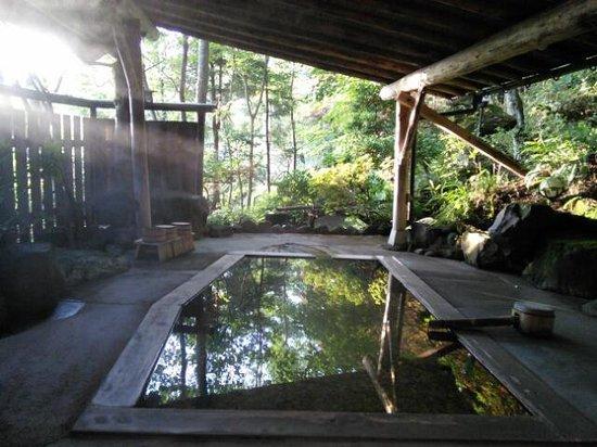 Ryokan Onuma : 森のお風呂 朝が美しい