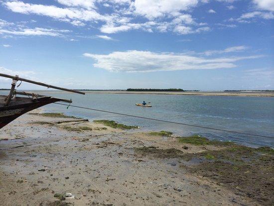 Bomani Beach Bungalows : Not easy to swim in