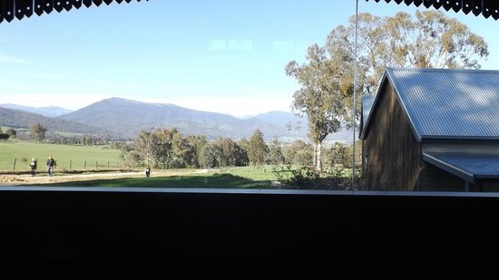 Bogong Horseback Adventures: The View