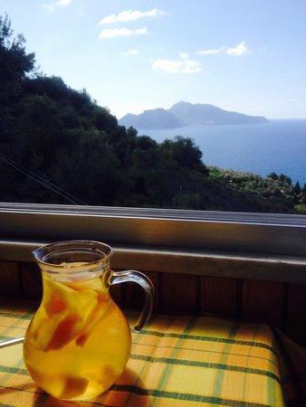 Ristorante Nastro D'Oro: Vino e percoche più Capri sullo sfondo