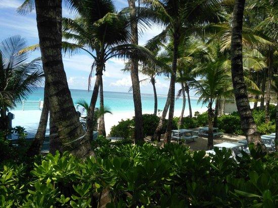 Sivananda Ashram Yoga Retreat: View from dinning area