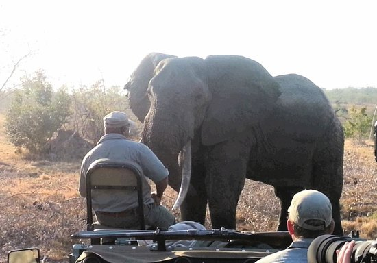 Idube Private Game Reserve Lodge : Upclose and personal