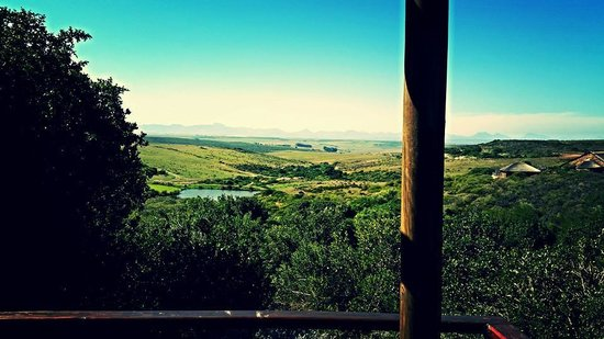 Garden Route Game Lodge: View from Chalet
