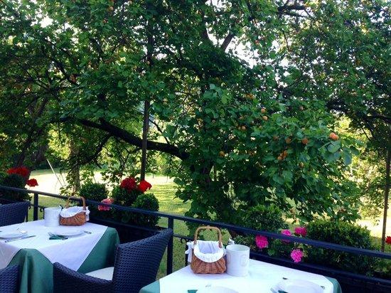 Hotel Garni Donauhof: Frühstücksterrasse