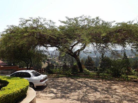 Discover Rwanda Youth Hostel : Dans la cour du Discovery