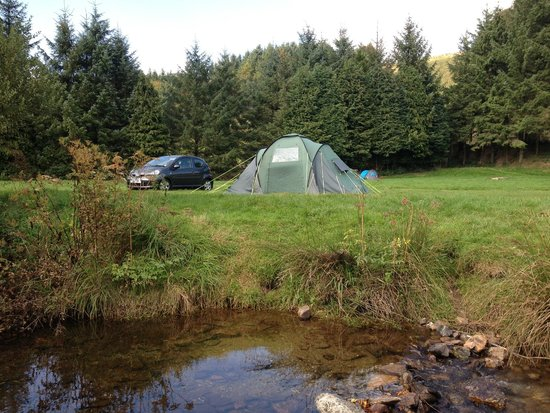Westermill Farm holidays Ltd: Lovely campsite