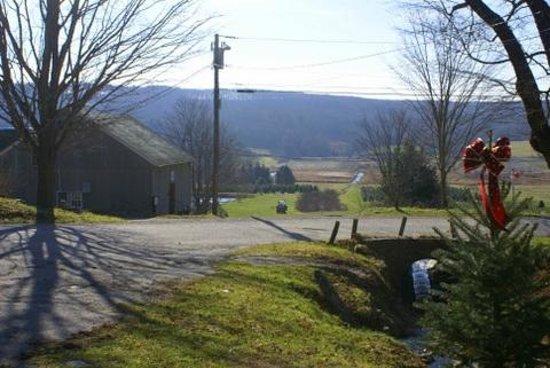 Angevine Farm: Scene from Christmas Barn
