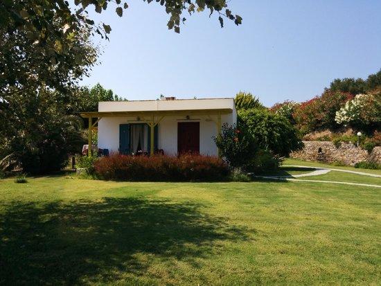 Palatiana Agriturismo - Philoxenia Cottages: Il nostro Studio